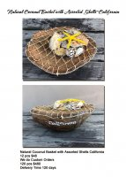 Natural Coconut Basket with Assorted Shells California