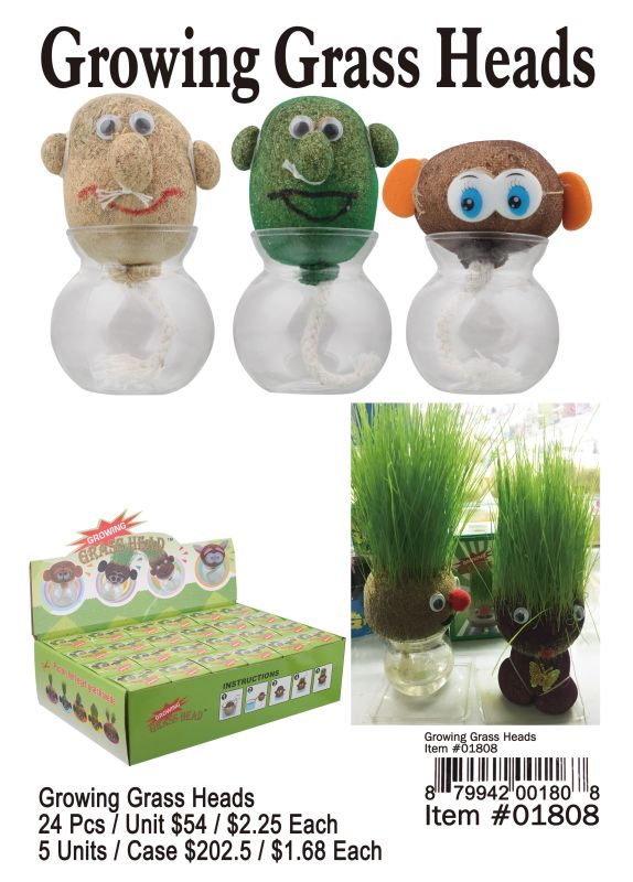 Growing Grass Heads - 24 Pieces Unit