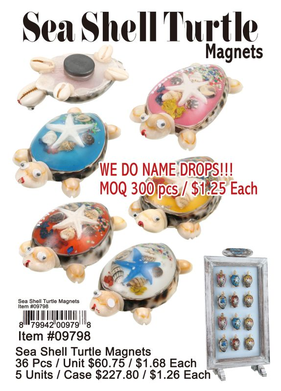 Sea Shell Turtle Magnets - 36 Pieces Unit