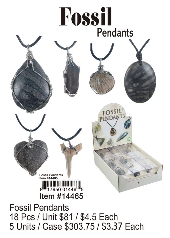 Fossil Pendants - 18 Pieces Unit