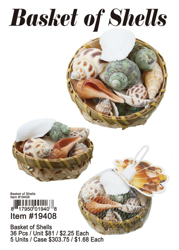 Basket of Shells Wholesale