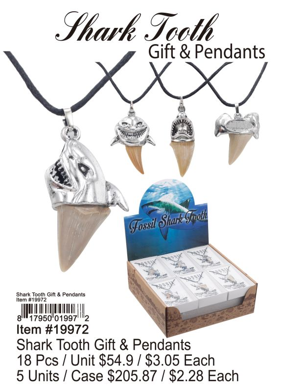 Shark Tooth Gift & Pendants - 18 Pieces Unit