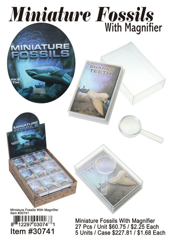 Miniature Fossils With Magnifier Wholesale